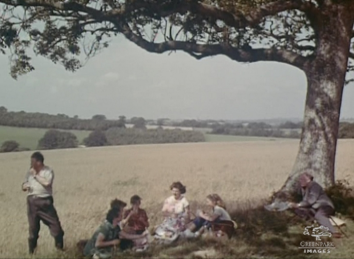 Picnic in the country, 1950s